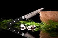 Кухонный нож универсальный Samura Tamahagane ST-0021